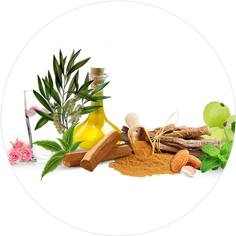 28 Ayurvedic Ingredients